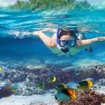 Snorkelling tour